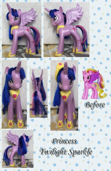 Princess Twilight Sparkle by phasingirl