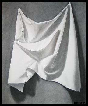 Charcoal Canvas Still Life by DesmoGirl