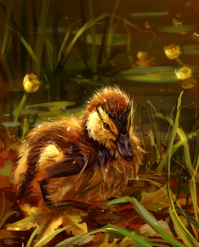 duckling autumn by AlaxendrA