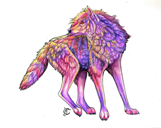 The Fluffiest Wolf by Thunderflight