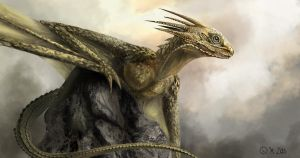 dragon on a ston by K-Lao