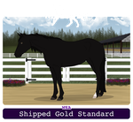 001 Shipped Gold Standard by SaandStoorm