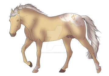 Gold Champagne Blanket Appaloosa Design (OPEN) by ShadowWings-Forever