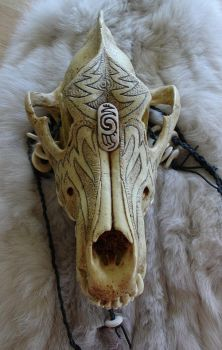 Dire Wolf Skull by DonSimpson
