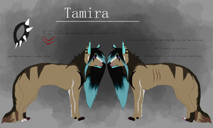 .::.  Tamira - Reference Sheet 2016 .::. by xUnknownSpirit