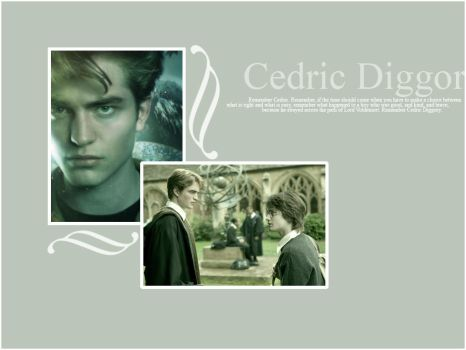 Cedric Diggory by Mayping