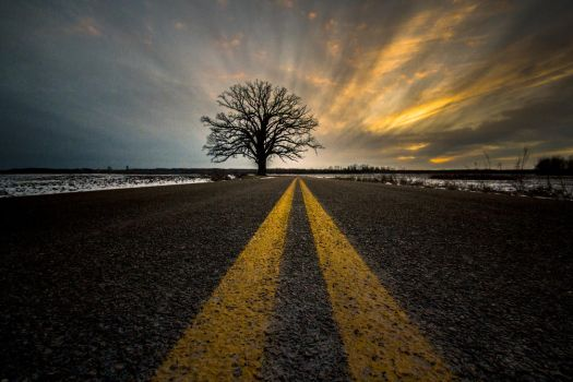 Burr Oak Road to Nowhere by PompatusOfLove