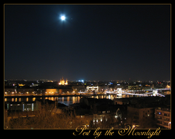 Pest by the Moonlight by Amanodel