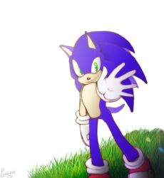 Sonic  by PiRoG-Art