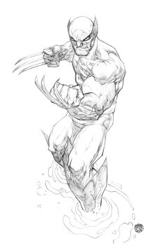 High Res - Wolverine by rogercruz