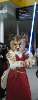 London Expo - Jedicat by tarangryph