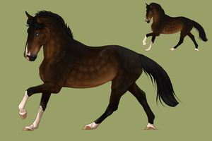 Horse design for @Nightsrunner for a trade by Pashiino