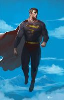 The Man Of Steel by hifarry