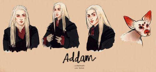 Addam-conceptart by silvertearbutterfly
