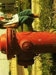 Fire Hydrant photo by lethalwire