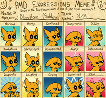 PMD Expressions Meme - Bloodstone by VibrantEchoes