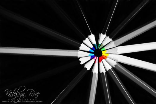 Colors by katelynrphotography