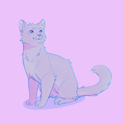 Dovewing by Shimmerspirit