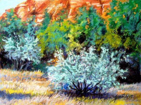Early July in Sedona by Ravenhaven