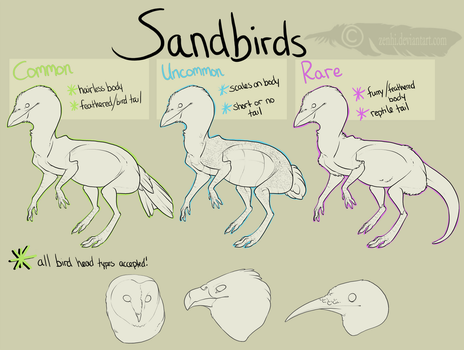 Sandbirds Species Guide by Kdaea