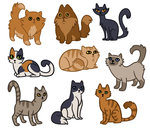 Neighberry Cattos by Quailmixalot