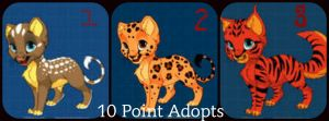 Point Adopt Collage #2 by Niyra