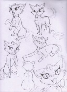 Cat(My Cartoon Style)Study and Sketch by BluDraconoid