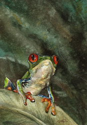 aceo treefrog (reserved) by kailavmp