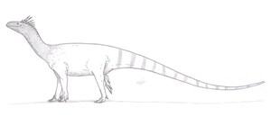 Melanorosaurus readi by King-Edmarka