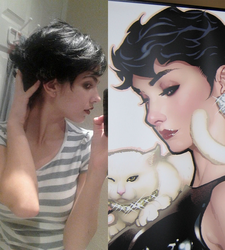 Adam Hughes Catwoman Wig WIP by langdons