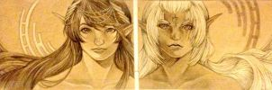 Drows and Elves by animaddict