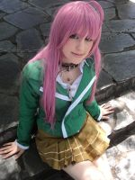 rosario for a vampire by D4sM0nster