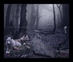 Raised by Wolves by MoonlightMysteria