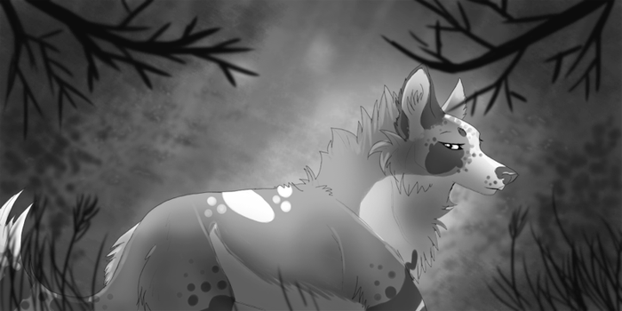 life is black/white by addiedog
