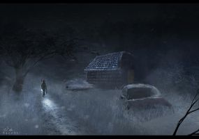 The Last Of Us by Secr3tDesign