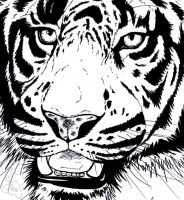 Tiger Ink by JenTheThirdGal