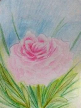 Peonia by CatrynFaeDragoness