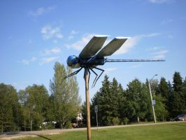 The Wabamun Lake Dragon Fly by MindlessAngel