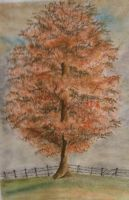 Autumn tree in pastels by Jennyben