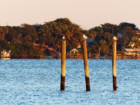 SunsetPilings by ecfield