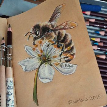 Bee by elinkalo