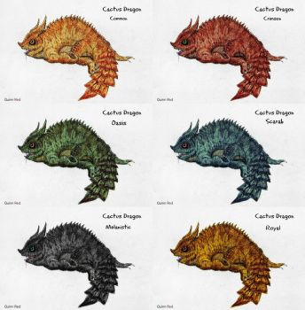 Cactus Dragon Breeds by Quinn-Red