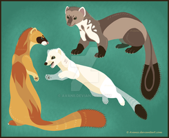 More Lineless Mustelids by Avanii