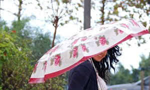 Smile to the Rain by Usra