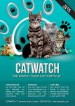 Cat Lover Shop Watch Care Business Flyer Template by n2n44