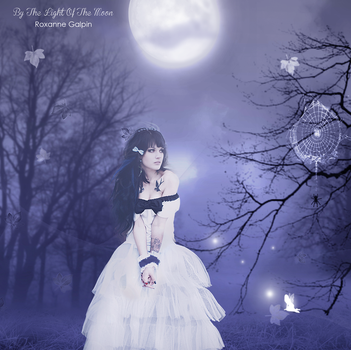 By The Light Of The Moon by bipolarfaerie