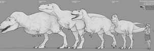 The Evolution of Gigantism in Tyrannosaurinae by Sketchy-raptor