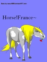Horse!France~ by BurntScones