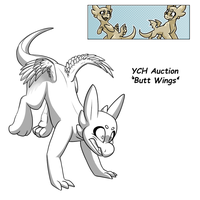 YCH Auction - Buttwings [CLOSED] by Wyngrew