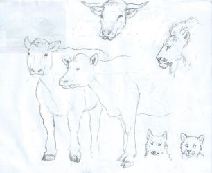 Animals sketch by Malaurielle